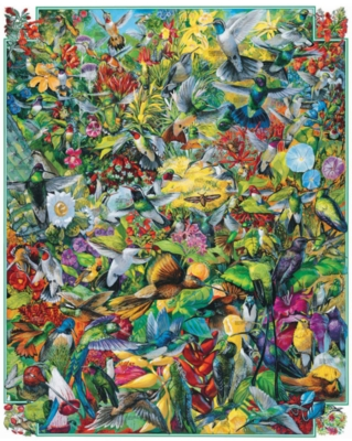 Jigsaw Puzzles - Hummingbirds
