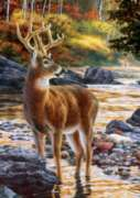 Large Format Jigsaw Puzzles - Bush: Shallow Crossing