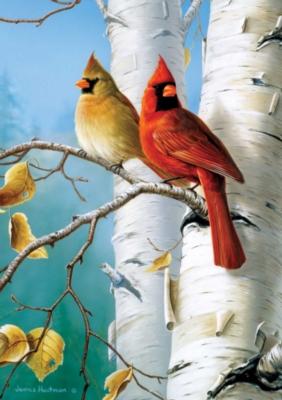 Hautman Brothers: Cardinals and Birch - 300pc Large Format Jigsaw Puzzle by Buffalo Games
