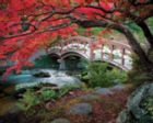 Hatley Park - 1000pc Jigsaw Puzzle by Springbok