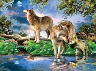 A New Moon - 1000pc Jigsaw Puzzle by Sunsout