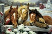 Friendly Neighbors - 180pc Horse Jigsaw Puzzle by Cobble Hill