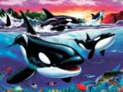 Killer Whales - 500pc Jigsaw Puzzle by Cobble Hill