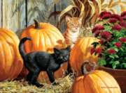 Pumpkin Patch - 1000pc Jigsaw Puzzle By Buffalo Games