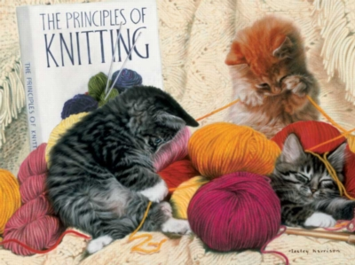 Knitting Principles - 1000pc Jigsaw Puzzle By Buffalo Games