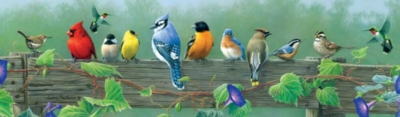 Hautman Brothers: Songbirds - 750pc Panoramic Jigsaw Puzzle by Buffalo Games