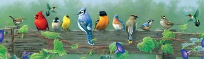 Buffalo Games Jigsaw Puzzles - Hautman Brothers: Songbirds