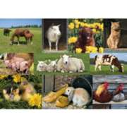Farm Animals - 1000pc Jigsaw Puzzle by Jumbo