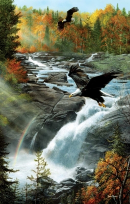 Eagles at the Waterfall - 1000pc Jigsaw Puzzle By Sunsout