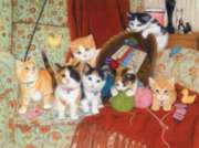 Knitting for Cats - 1000pc Jigsaw Puzzle By Sunsout