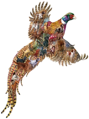 Pheasant Days - 685pc Shaped Jigsaw Puzzle By Sunsout