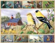 Songbirds - multi-picture - 1000pc Jigsaw Puzzle by White Mountain