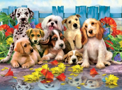 Posing Pups - 200pc Jigsaw Puzzle by Ravensburger