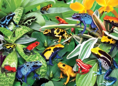 Friendly Frogs - 300pc Jigsaw Puzzle by Ravensburger