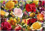 Wild Rose Tango - 500pc Jigsaw Puzzle by Educa