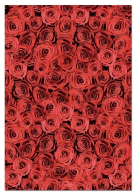 Roses - 500pc Impossible Jigsaw Puzzle by EDUCA