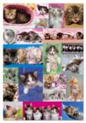 Educa Jigsaw Puzzles - Kitten Collage