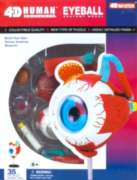 Human Eyeball - 35pc 4D Human Anatomy Puzzle