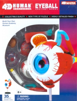 Educational Puzzles - Human Eyeball