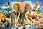 African Oasis - 234pc TDC Miniature Jigsaw Puzzle