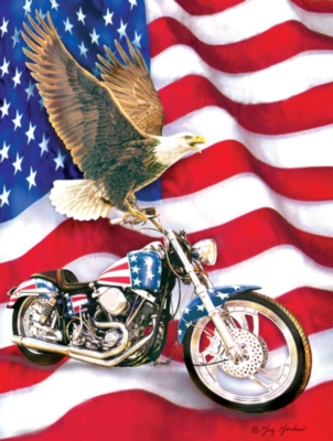 Symbols Of Freedom - 500pc Jigsaw Puzzle by Sunsout