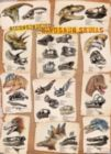 Dinosaur Skulls - 1000pc Jigsaw Puzzle by Eurographics