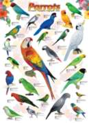 Eurographics Jigsaw Puzzles - Parrots