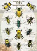 Eurographics Jigsaw Puzzles - The World of Bees