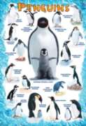 Eurographics Jigsaw Puzzles - Penguins