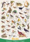 Birds - 1000pc Jigsaw Puzzle by Eurographics