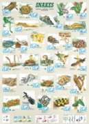 Eurographics Jigsaw Puzzles - Snakes