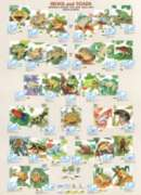Frogs & Toads - 1000pc Jigsaw Puzzle by Eurographics