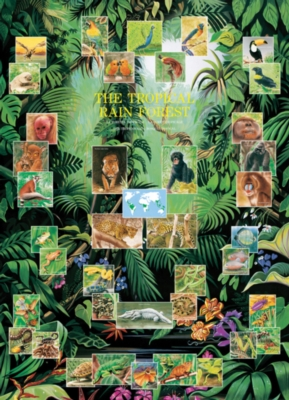 The Tropical Rain Forest - 1000pc Jigsaw Puzzle by Eurographics