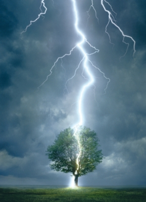 Lightning Striking Tree - 1000pc Jigsaw Puzzle by Eurographics