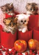 Eurographics Jigsaw Puzzles - Kittens in Pots