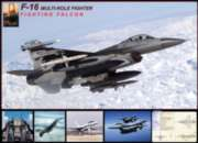 F-16 Fighting Falcon - 1000pc Jigsaw Puzzle by Eurographics