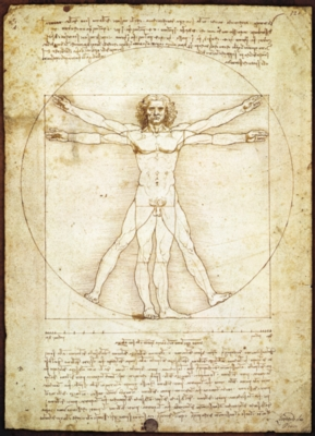 Da Vinci: Vitruvian Man - 1000pc Jigsaw Puzzle by Eurographics