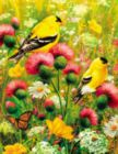 Goldfinch - 350pc Large Format Jigsaw Puzzle by Springbok