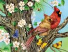 A Cardinal Pair - 1000pc Large Format Jigsaw Puzzle By Sunsout