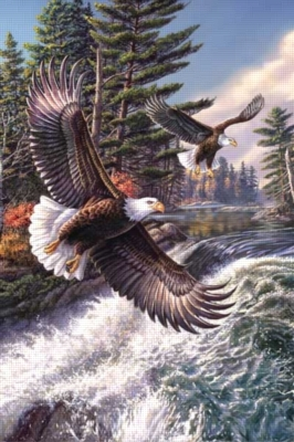 Whitewater Eagle - 500pc Jigsaw Puzzle By Sunsout
