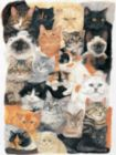 Cat Collage - 300pc Large Format Jigsaw Puzzle By Sunsout