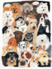 Dog Collage - 300pc Large Format Jigsaw Puzzle By Sunsout