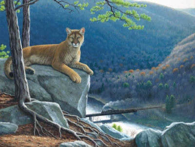 Mountain Lion Tracks - 500pc Jigsaw Puzzle By Sunsout
