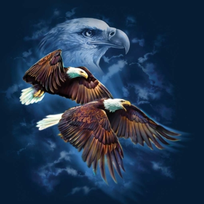 Eagle Spirit - 500pc Jigsaw Puzzle By Sunsout