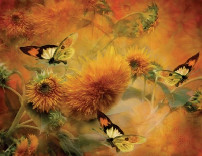 Butterflies & Sunflowers - 1000pc Large Format Jigsaw Puzzle By Sunsout