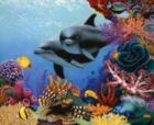 Sea Gems - 1500pc Jigsaw Puzzle By Sunsout